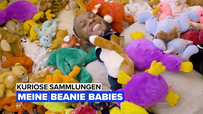 Kuriose Sammlungen: Beanie Babies