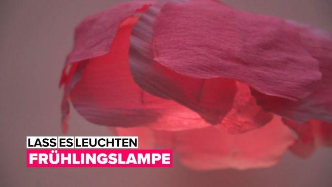 Lass es leuchten: eine Blumenlampe
