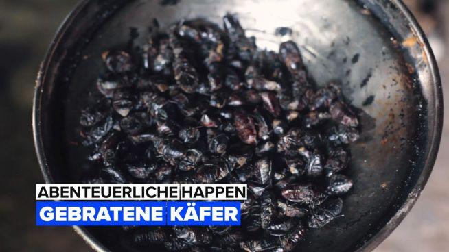 Abenteuerliche Happen: Käfer