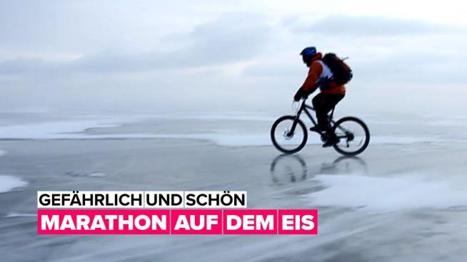 Aufregender Wintersport: ein Marathon auf dem Eis